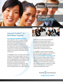 ProfileXT Team Report Brochure_Page_1
